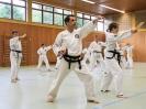 Taekwon-Do Training_35