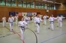 Training :: Taekwon-Do Training_5
