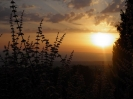 Landschaft/Landscape :: Taekwon-Do Summer Camp - Cyprus 2012