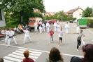 Taekwon-Do Vorfuehrung Lebenshilfe Schwabach-Roth eV_6