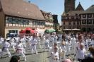 Vorführung beim Kinderfest auf dem Marktplatz