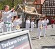 Schwabacher Kinderkirchweih 2012