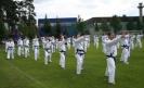 Erwachsenenlehrgänge :: Taekwon-Do Sommerfest in Erlangen