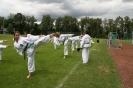 Sommerfest in Erlangen - Kinderlehrgang