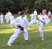Taekwon-Do-Training im Stadtpark Schwabach_12
