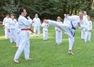 Taekwon-Do-Training im Stadtpark Schwabach_20