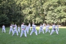 Taekwon-Do-Training im Stadtpark Schwabach_3
