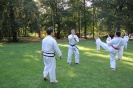 Taekwon-Do-Training im Stadtpark Schwabach_4