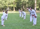 Taekwon-Do-Training im Stadtpark Schwabach_9