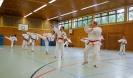 Taekwon-Do Training_15