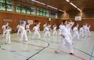 Taekwon-Do Training_44