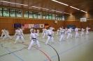 Training :: Taekwon-Do Training_4