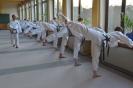 Taekwon-Do - Trainingscamp auf Schloss Schney_1
